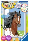 Ravensburger 280636 Malen nach Zahlen: Pferdeportrait