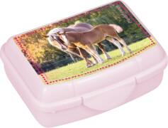 Die Spiegelburg - Pferdefreunde Mini-Snackbox, ca. 9,5 x 6,5 x 3,5 cm, sortiert